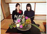 カンテレドーガ「横山由依(AKB48)がはんなり巡る 京都 いろどり日記 #17」