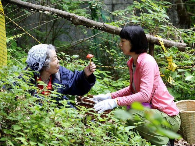 テレビ東京オンデマンド「ひとりキャンプで食って寝る 第4話 熊も見ているキノコ狩り」