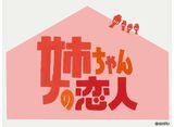 カンテレドーガ「姉ちゃんの恋人」 #1〜#9 パック