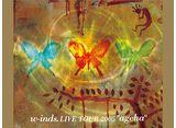 """w-inds. Live Tour 2005 """"ageha"""""""