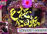 ビワコのラブファイター #216「CRスーパー海物語IN沖縄4 桜バージョン ライト199ver.」