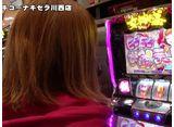 たま嵐 第28話/第29話/第30話