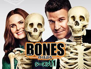 �ڹ����ۺǿ��Υ�������11���轵��ƨ���ۿ���إܡ���/BONES -��ϸ��- ��������11��