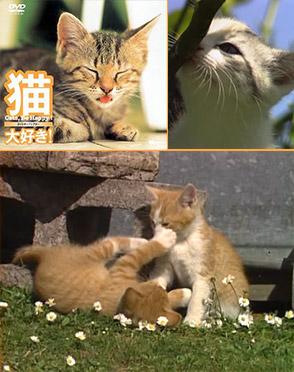 猫、大好き!