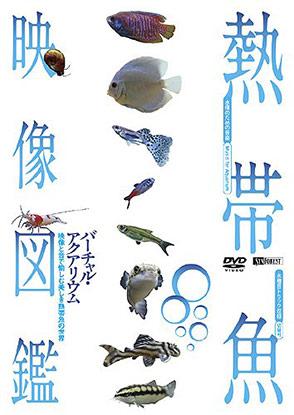 熱帯魚映像図鑑