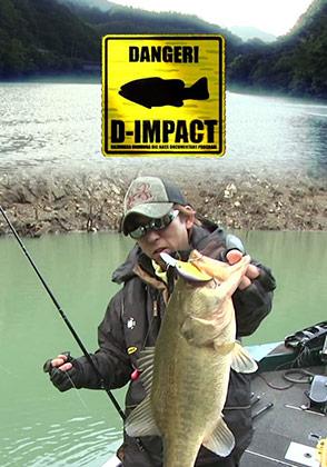 D-IMPACT