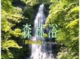 森林浴「新緑の森」スペシャル