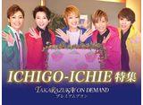 ICHIGO-ICHIE特集