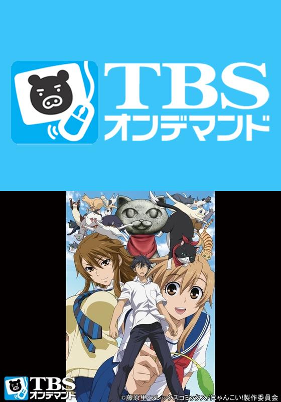 TBSオンデマンド「にゃんこい!」