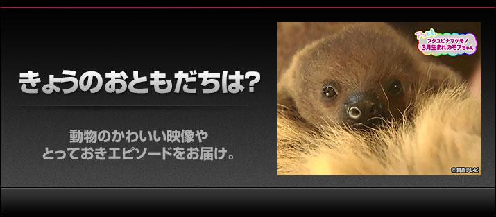 関西テレビ おんでま「きょうのおともだちは?」